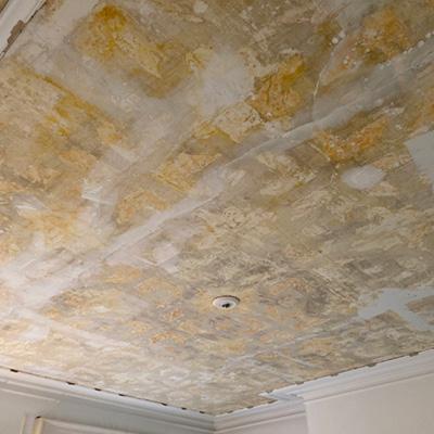aristocrat-mouldings-ornate-ceiling-restoration-2